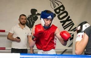 боксеры в ринге