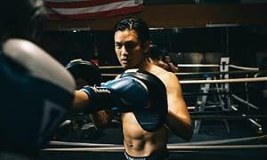 как выбрать лапы для бокса